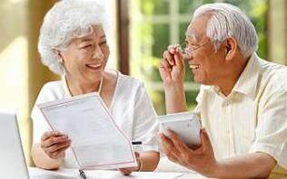 成都养老保险网上查询