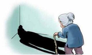生命人寿养老保险有哪些